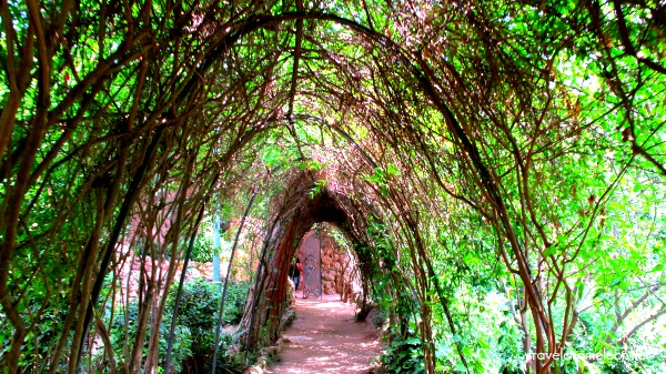 I am a romantic at heart, especially when it comes to such romantic walkways.