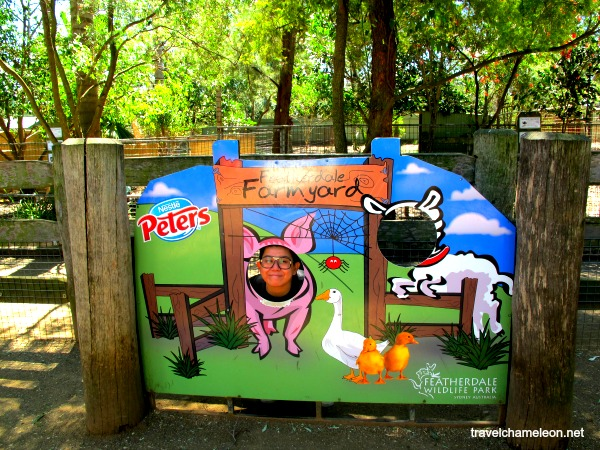 Spot the human? Having fun at the barnyard animal area.