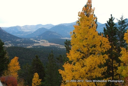Colorado fall colours.