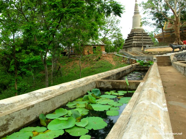 Lotus pond path to the Tiger Temple.