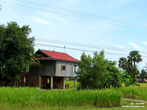 The lush green fields and local home in Kep.