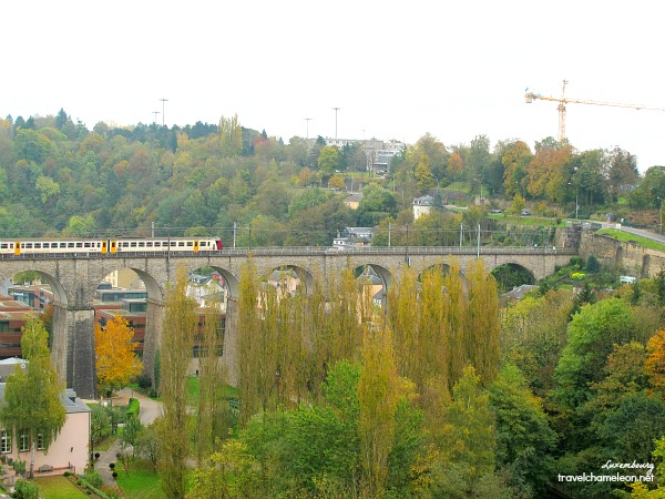 A train crosses one of the citys' bridge during autumn.