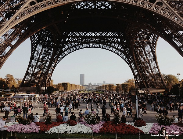 Autumn flowers at the feet of the Eiffel Tower with the crowd in the background.