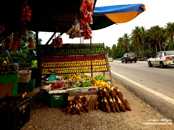 Fruit stalls such as this one is normally seen along the way to Redang Beach.