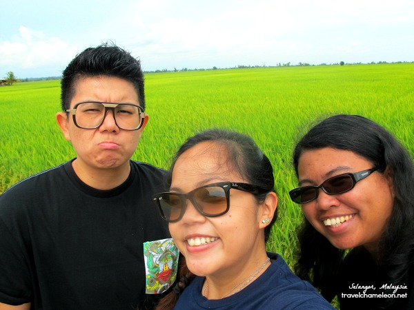 Happy to see the green fields well almost everyone was happy. Hehe.