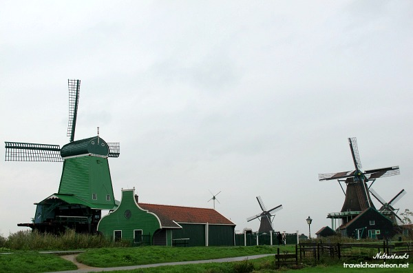 Make sure to check out these windmills when in Zaanse Schans, up close and personal.