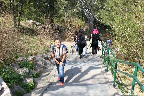 Walking around the Temple of Heaven Park to see the view of area.