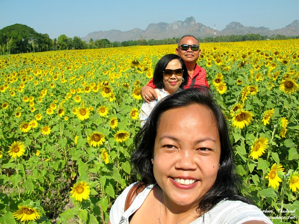 A selfie with the parents in Lopburi sunflower fields.